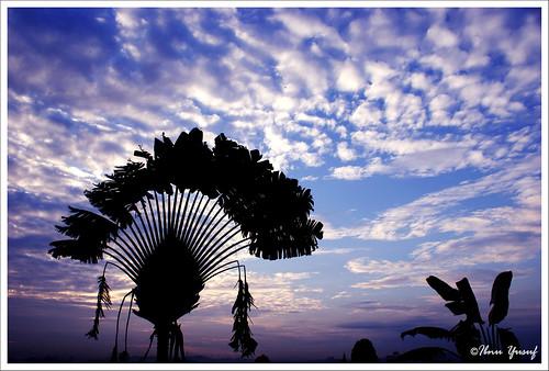 clouds sunrise explore malaysia blueskies lovely a200 selangor shahalam blueribbonwinner travelerspalm sonydslr abigfave asiseeit diamondclassphotographer flickrdiamond ibnuyusuf goldstaraward kelabshahalam mysonia