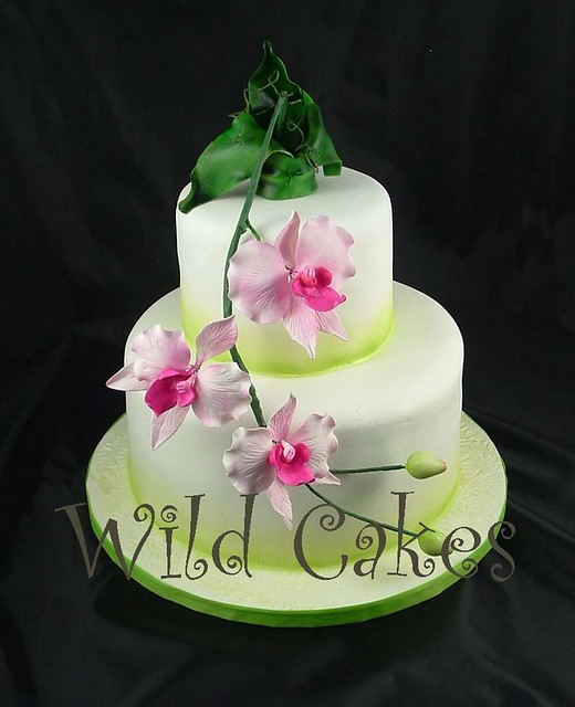 bamboo and orchids wedding cake flickr photo sharing