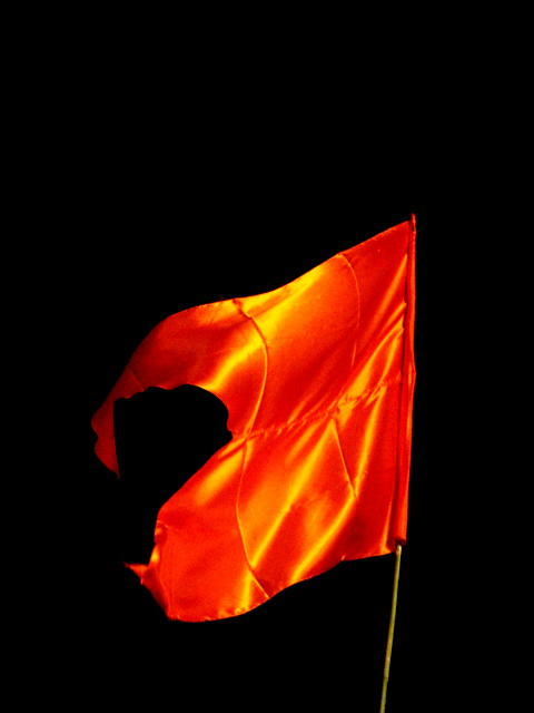 Shiv Sena Flag http://www.flickr.com/photos/jozf/2970573937/