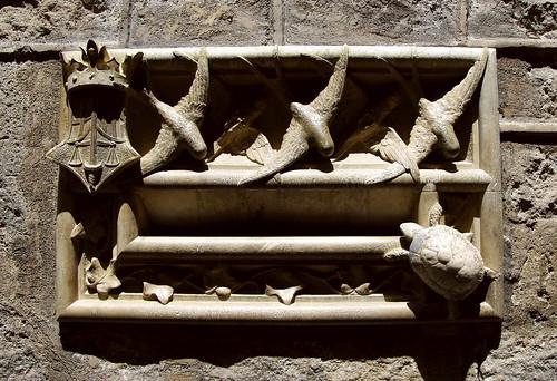 Les tres orenetes i la tortuga / Three swallows and a turtle
