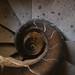 Spiral Staircase, La Sagrada Familia, Barcelona by moggsterb