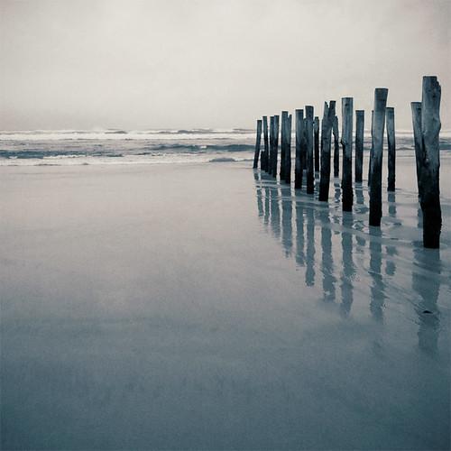 sea newzealand beach square sand stclair grain nz getty lith otago dunedin poles pilings toned bsquare litheffect infinestyle pentaxda14mmf28ed ©borealnz