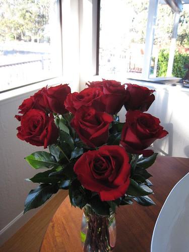 roses, long stem roses, red, flower IMG_6739