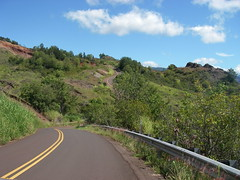 Winding Waimea Canyon Drive
