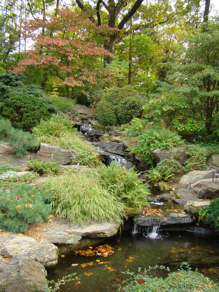 Simple rock garden ideas photograph rock garden design ima for Simple rock garden designs