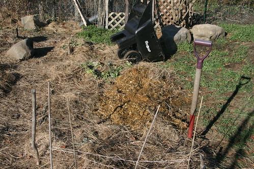 Skippy 39 S Vegetable Garden Horse Manure For The Garden
