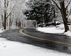 First Snow - Winter 2008