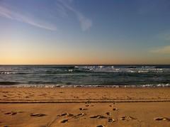 Aquabumps - Bondi Beach