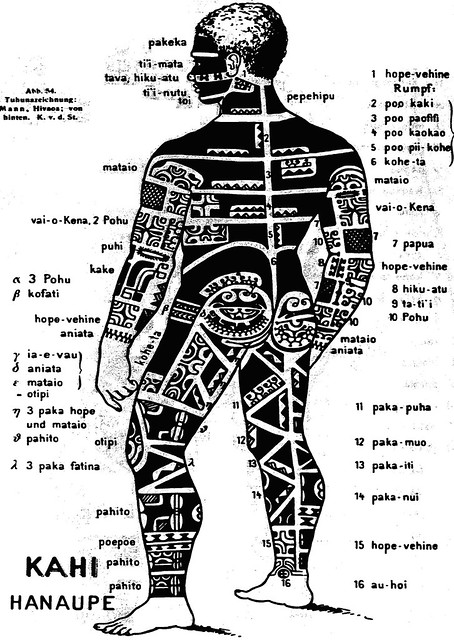 marquesan tattooing rear by von de steinen in alfred tattoo person diagram tattoo chest diagram