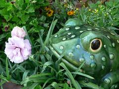 Maria's Flower Garden
