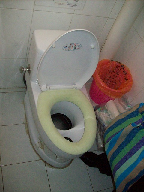 ud composting toilet picture shows a toilet inside a