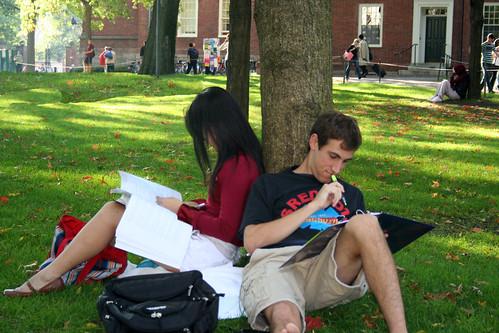 Высшее образование глазами студента и преподавателя | Dystlab Library
