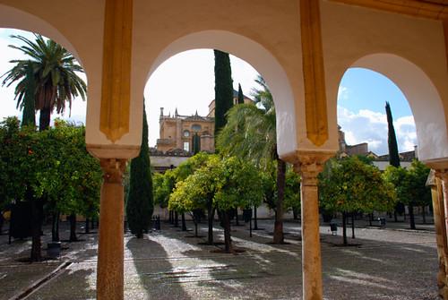 patio de los naranjos de cordoba  Flickr - Photo Sharing!