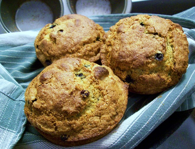 Big Blueberry Muffins | Flickr - Photo Sharing!