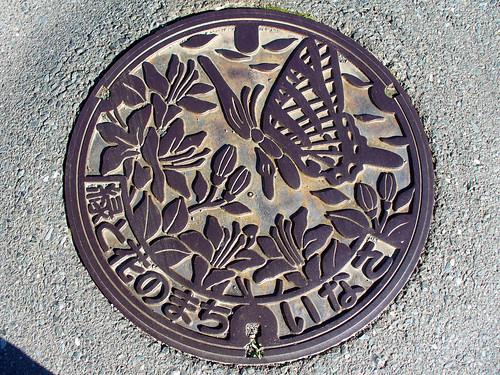 Inasa town, Shizuoka pref manhole cover(静岡県引佐町のマンホール)