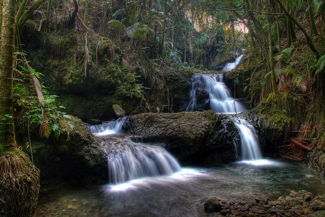 Botanical Gardens Hilo Hawaii Hdr Flickr Photo Sharing