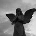 Small photo of Cemetery Angel B&W