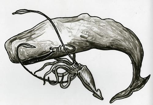 squid vs. whale drawin...