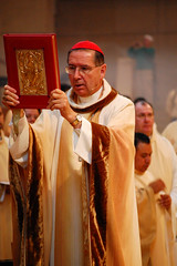 cardinal, presbyter, deacon, clergy, preacher, priest, pope, auxiliary bishop, bishop, priesthood, nuncio, blessing, metropolitan bishop, person, bishop, patriarch,