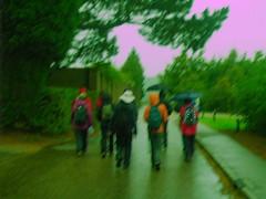 Les parapluies des Marcheurs Samedi