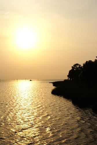 beach island photography florida diego palm fotos fotografia garzon blestdevil sunsetdiego