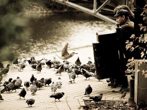 pigeons ne riga lightroom melancholic taip ne6 ne4 ne5 ne2 ne8 ne9 ne3 olympuse510 ne7 taip2 taip5 taip10 taip3 taip4 taip6 taip8 taip9 fotofiltroauksas taip7vytuks lashelis