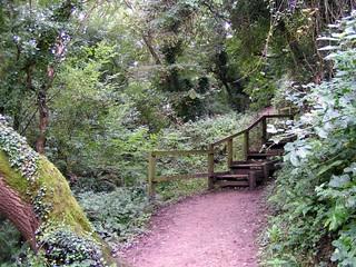 Path to Robin Hood's Bay