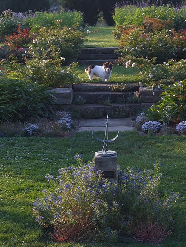 ohio cleveland rosegarden ozzie kirtland holdenarboretum gardenofgoodandevil lanterncourt treehugger007 gardenoutsidemyfrontdoor