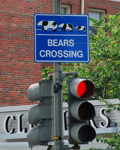 Bears Crossing