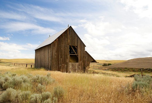 Oregon Hay Field by Swainboat