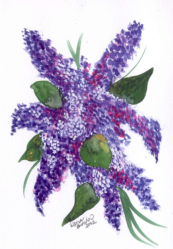 Lilacs watercolor