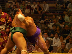 sumo, individual sports, contact sport, sports, combat sport, competition event, grappling, wrestling, puroresu, wrestler,