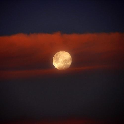 sunset sky fullmoon tasmania platinumphoto moonriseatsunset themooninoppositionwiththesun magicunicornverybest magicunicornmasterpiece
