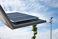 daylighting, solar panel, solar energy, solar power, street light, lighting,