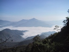 Chiang Rai 24