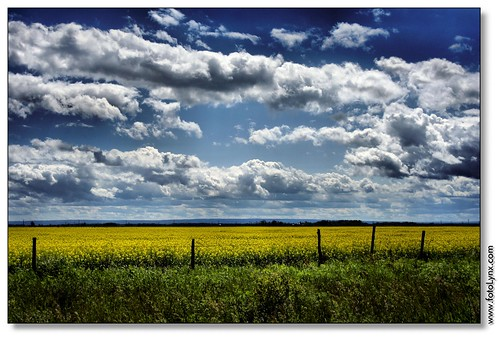 Manitoba's Colors of Summer