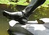 Bullfrog_Foot