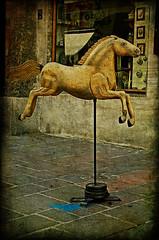 El cavall daurat  // The Golden Horse