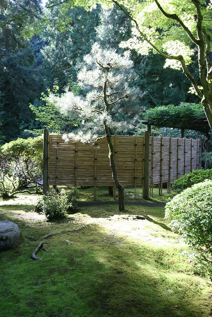 Japanese Garden Fence http://www.flickr.com/photos/gardeninginaminute/2881138683/