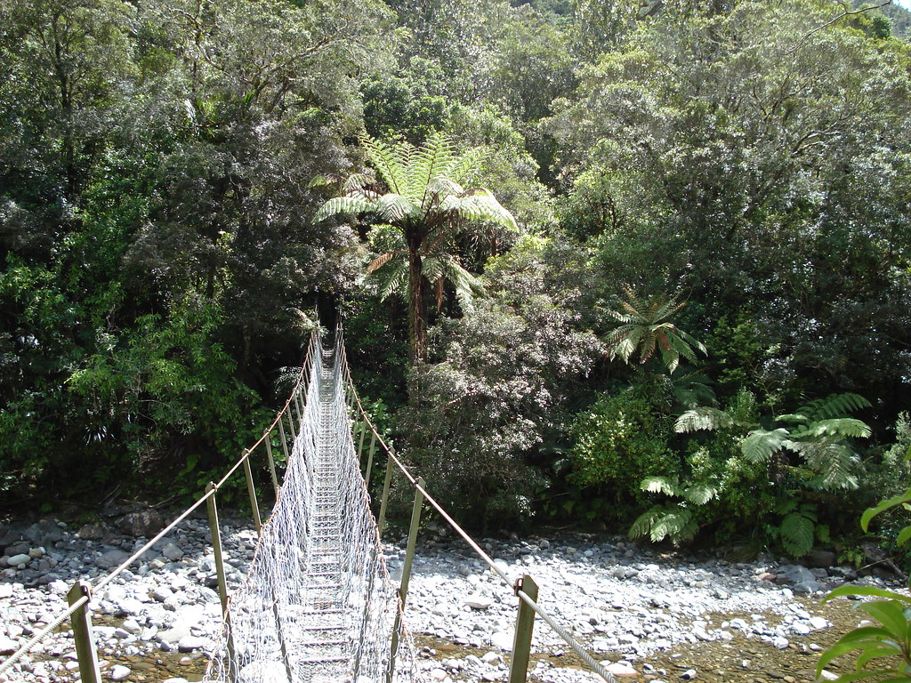 Simple suspension bridge over Kauaeranga River