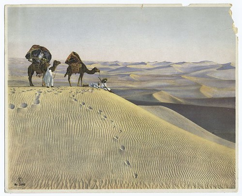 [Men and camels in the desert.]