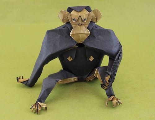 Chimpanzee 1.2