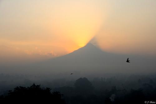 morning cloud mist bird fog sunrise canon indonesia volcano smoke yogyakarta j2 borobudur jiangjiang centraljava mountmerapi 400d peepingsun jsquare