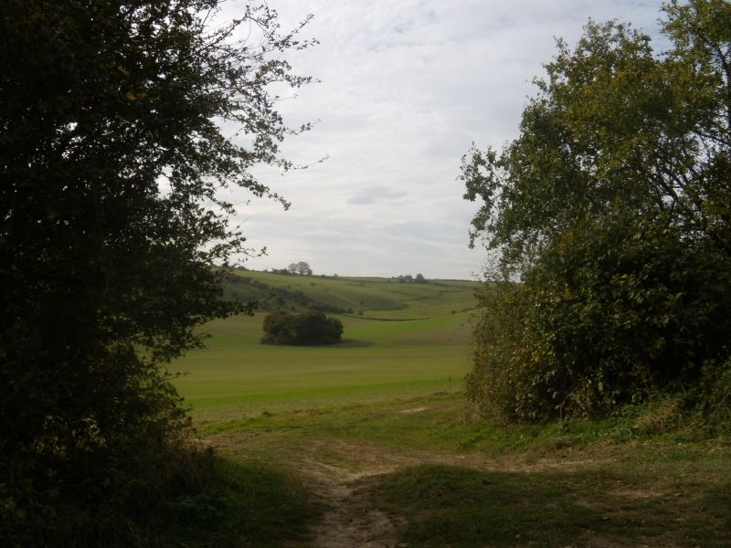 view through the gap Goring circular