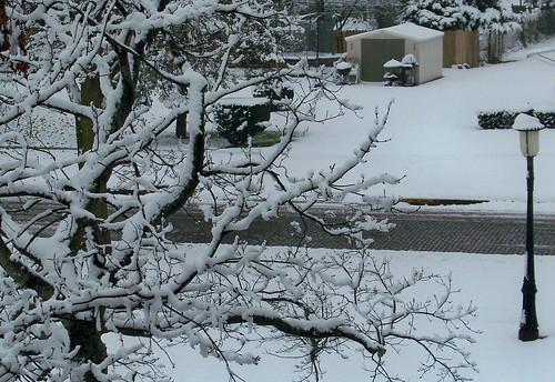november usa castle illinois united snowstorm homer states staaten étatsunis vereinigten raycunningham raymondcunningham zaruka raymondkcunninghamjr