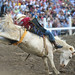 Strawberry Days Rodeo - Best of - June 21, 2008