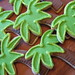 Sugared Palm Tree Cookies