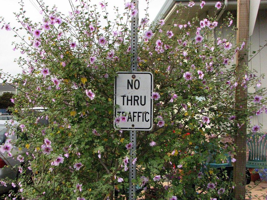 No Thru