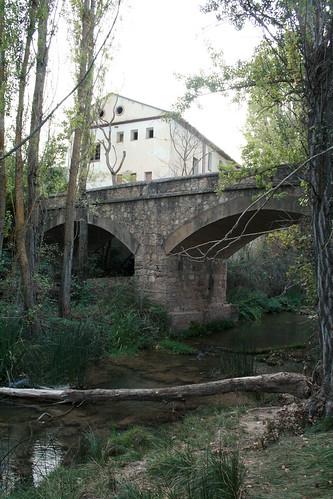 Puente sobre el rio del palo