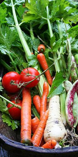 Ensalada de colores apio tomate y zanahoria - Ensalada de apio y zanahoria ...